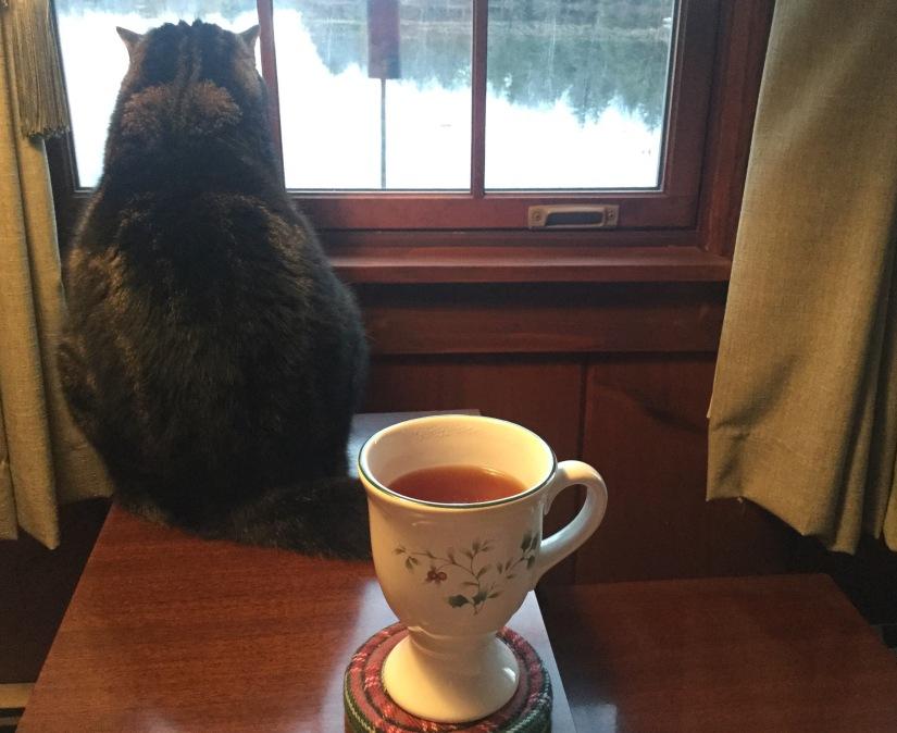 Kitty and Christmas Tea