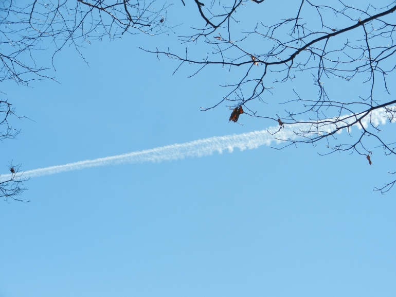 Jet stream across beautiful, blue sky
